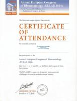 Teilnahmebestätigung Dr. med. Holger Schwenke EULAR Paris 2014